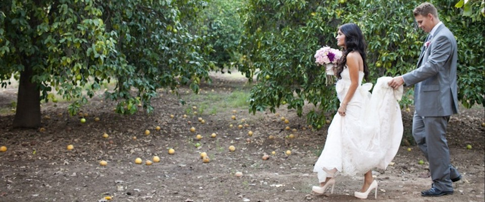 Orcutt Ranch Wedding.Orchard Ranch Venue For Rent In West Hills